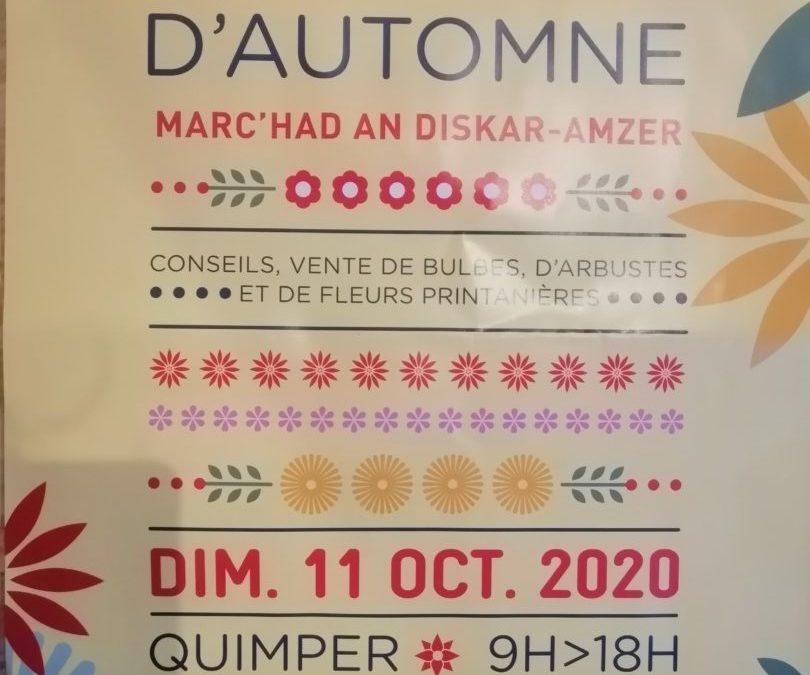 marche d'automne, Quimper